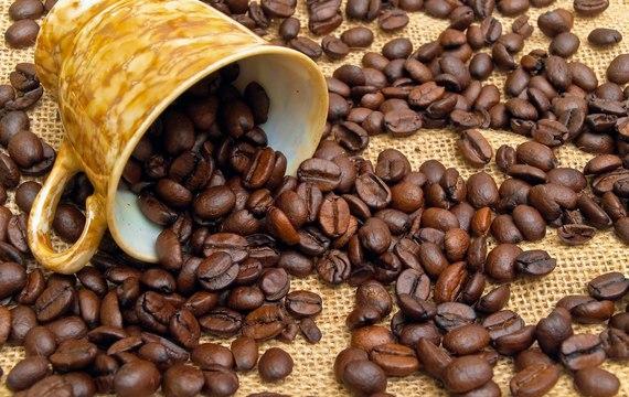 Cómo conservar el café?