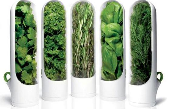 El uso de las hierbas, en qué platos?