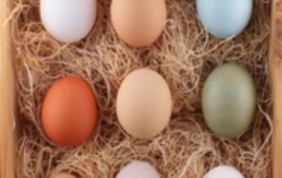 Los distintos huevos, modifican la receta final?